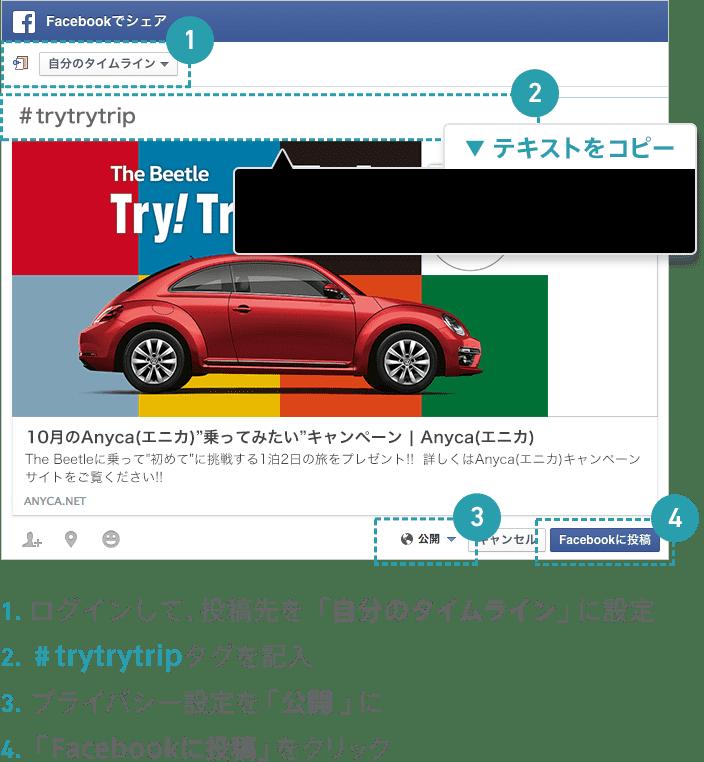 1.ログインして、投稿先を「自分のタイムライン」に設定 2.#trytrytripタグを記入 3.プライバシー設定を「公開」に 4.「Facebookに投稿」をクリック