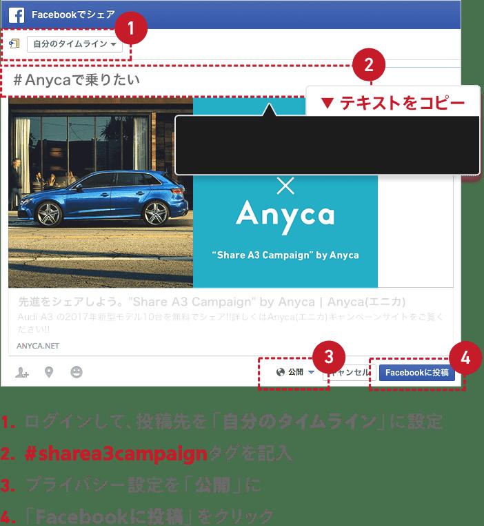 1.ログインして、投稿先を「自分のタイムライン」に設定 2.#Anycaで乗りたいタグを記入 3.プライバシー設定を「公開」に 4.「Facebookに投稿」をクリック